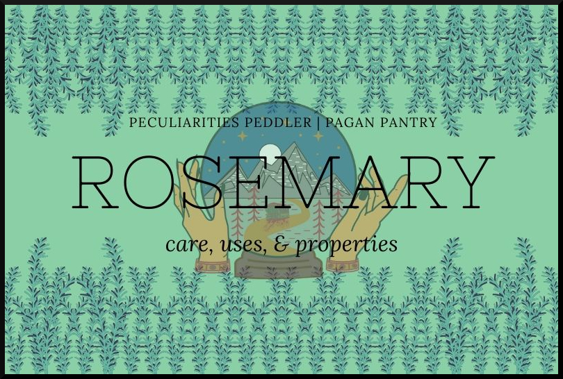 Pagan Pantry: Rosemary